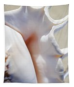 Spider Conch Shell Tapestry