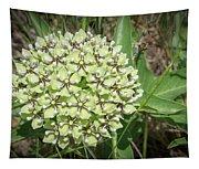 Spider Milkweed - Antelope Horns Tapestry