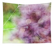 Spiderweb In The Mist Tapestry