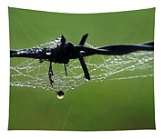 Spiderweb On Fencing Tapestry