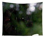 Spinning My Web Tapestry