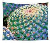 Spiral Galaxy Tapestry