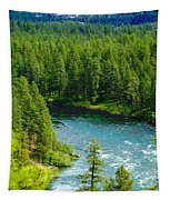 Spokane...the River And The City Tapestry