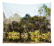 Spoon Bill Swamp Tapestry