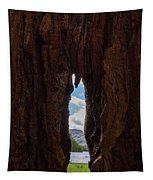 Spot The Lake Shore View Through The Hollow Tree Trunk Tapestry