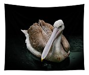 Spotlight On A Pink-backed Pelican Tapestry