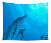 Spotted Dolphins Tapestry