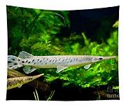 Spotted Gar Aquarium Fishes Pair Tapestry