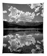 310204-bw-sprague Lake Reflect Bw  Tapestry