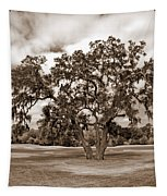 Spreading Tree Tapestry