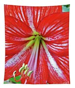 Spring Beauty Tapestry