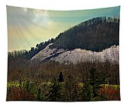 Spring Begins At Glassy Mountain Tapestry