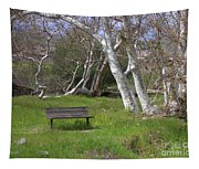 Spring Bench In Sycamore Grove Park Tapestry