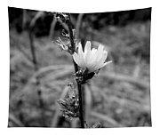 Monochrome Flower Series - Spring Bloom Tapestry