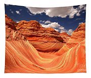 Spring Clouds Over The Wave Tapestry