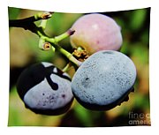 Spring - Colors - Blueberries Tapestry