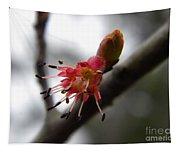 Spring Flower Closeup 2 Tapestry