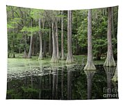 Spring Green In Cypress Swamp Tapestry