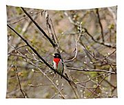 Spring Grosbeak Tapestry