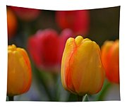 Spring In Colors Tapestry