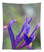 Spring Iris Three Tapestry