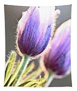 Spring Time Crocus Flower Tapestry