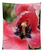 Spring Tulips 90 Tapestry
