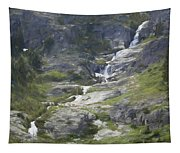 Spring Waterfall In The Tetons Tapestry