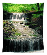 Spring Waterfall Tapestry