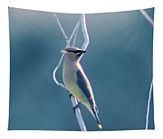 Spring Wax Wings  Tapestry