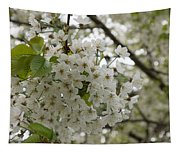 Springtime Abundance - Masses Of White Blossoms Tapestry
