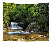 Springtime At Saint Mary's Falls Virginia Tapestry