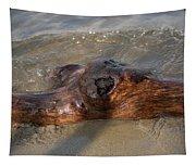 Springtime Driftwood Tapestry