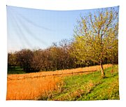 Springtime In Tennessee Tapestry