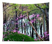 Springtime In The Mountains 2 Tapestry