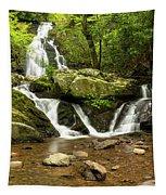 Spruce Flats Falls 2 B Tapestry