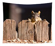 Squirrel On The Fence Tapestry