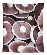 Stacked Mushrooms Tapestry