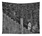 Stairs In Black And White Tapestry