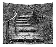 Stairway To Nature Tapestry