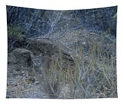 Stalked - Mountain Lion Tapestry