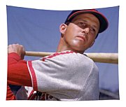 Stan Musial Tapestry