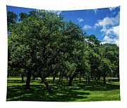 Stand Of Oaks Tapestry