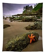 Starfish On The Rocks Tapestry