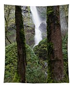 Starvation Creek Falls Between The Trees Tapestry