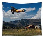 Steerman Bi-plane Tapestry