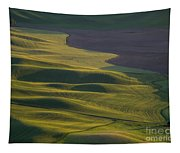 Steptoe Butte 12 Tapestry