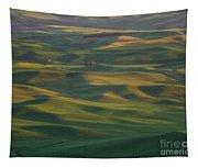Steptoe Butte 13 Tapestry