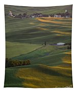 Steptoe Butte 16a Tapestry
