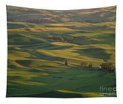 Steptoe Butte 9 Tapestry
